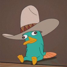 Mr. Perry